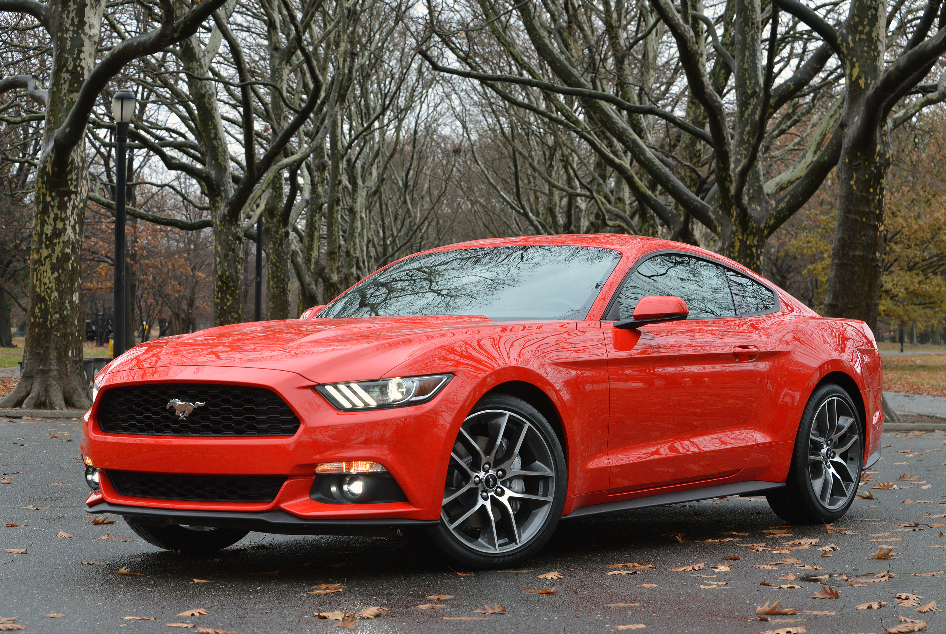 2015 Mustang Options Amp Features Motor Review